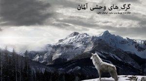 گرگ های وحشی آلمان - دانلود مستند گرگ های وحشی آلمان با لینک مستقیم + دوبله فارسی