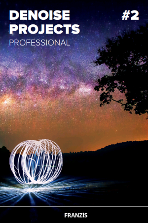 Franzis DENOISE Projects Professional 2.27.02713 حذف نویز ها بر روی تصاویر