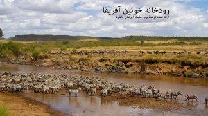 رودخانه خونین آفریقا - دانلود مستند رودخانه خونین آفریقا با لینک مستقیم و به صورت کاملا رایگان