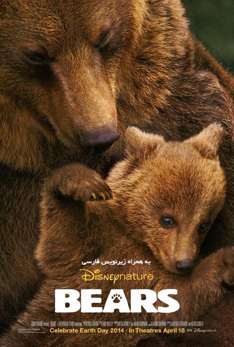 دانلود مستند خرس ها - Bears 2014 با لینک مستقیم و به صورت کاملا رایگان
